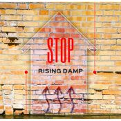 Guide to Rising Damp