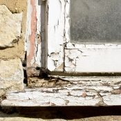 HOW TO SIMPLY IDENTIFY A DAMP HOUSE